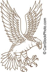 Osprey Swooping Drawing - Drawing sketch style illustration...