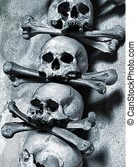 ossa, crani