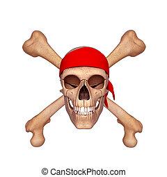 ossa, cranio umano