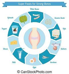 ossos, alimentos, forte, infographics