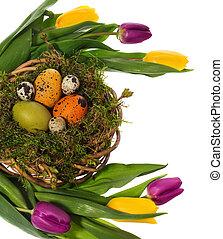 ostereier, hand, gemalt, in, a, korbgeflecht, kranz, nest vogel, von, moos, forest., umgeben, per, tulips.