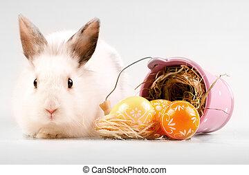 ostereier, hexe, kaninchen