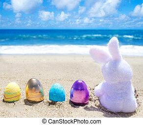 osterhase, mit, farbe, eier, auf, der, meeresstrand