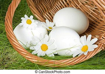 osterkorb, mit, eier
