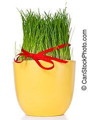 ostern gras