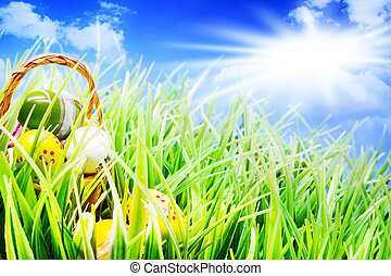 ostern körbe, in, der, gras, eier, sonnenschein