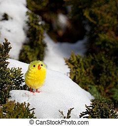 Ostern - K?ken im Schnee