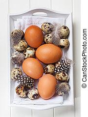 ostern, stilleben, mit, eier
