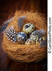 ostern, stilleben, mit, wachtel, eier