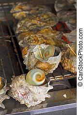 ostra, conchas, (kaki)