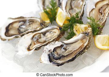 ostras, con, limón, y, eneldo
