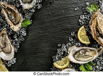 ostras, servido, en, piedra, placa, con, hielo, deriva