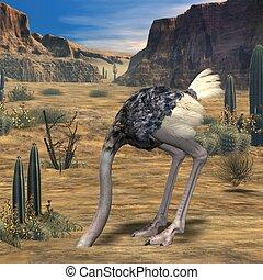 Ostrich-3D Animal - 3D Render of an Ostrich