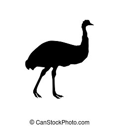 Ostrich emu silhouette on the white background. Vector...