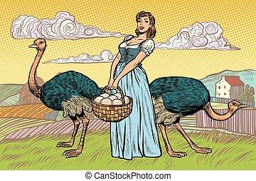 ostrich farm eggs. woman peasant farmer