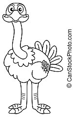 ostrich looking ahead
