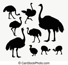 Ostrich poultry animal silhouettes. Good use for symbol, ...