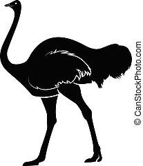 Ostrich Silhouette Vector