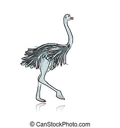 Ostrich sketch for your design