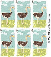 Ostrich Visual Game