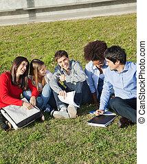 osztálytársak, ülés, főiskola, ember, egyetem területe, boldog