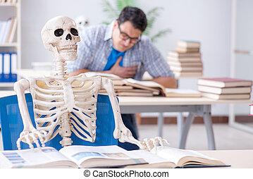 osztályterem, előadás, kihallgatás, csontváz, diák