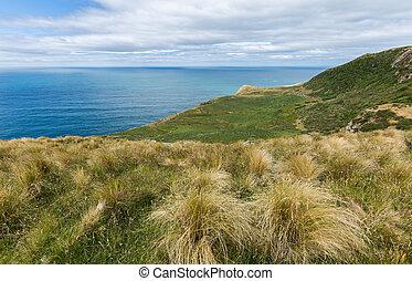 otago, sommet, mouintain., péninsule, zélande, côtier, nouveau, vue