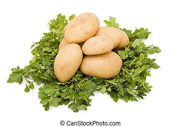 otatoes on white background close up shoot
