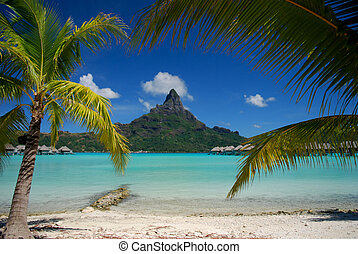 View of Otemanu mountain on Bora Bora framed by palm trees and turquoise water