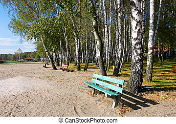 otoñal, parque