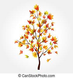 otoño, árbol., arce