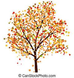 otoño, arce
