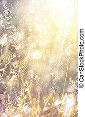otoño, arte, soleado, Plano de fondo, naturaleza