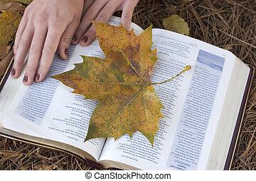 otoño, biblia
