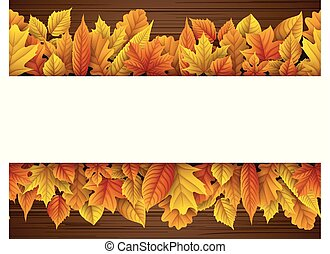 otoño, blanco, hojas, rectángulo
