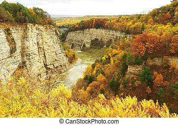 otoño, cañón, escena, cascadas