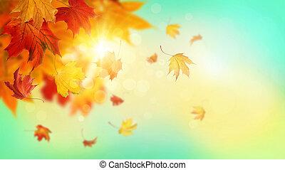 otoño, caer sale