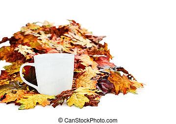 otoño, café