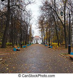 otoño, callejón, con, linternas, y, rotonda