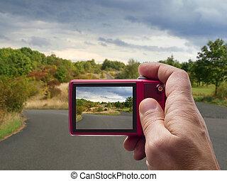 otoño, camino, con, cielo nublado, en, cámara, visor