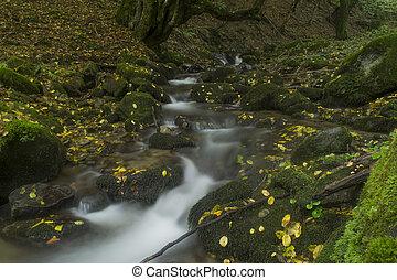otoño, cascada