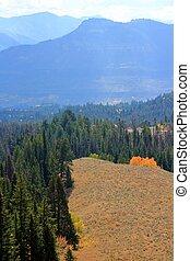 otoño, colores, montana