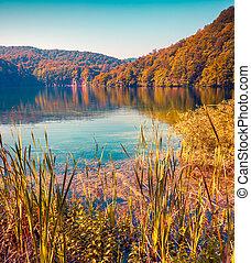 otoño, colorido, parque nacional, lagos, mañana, plitvice