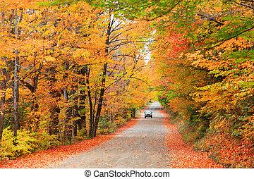 otoño, conducir en, new hampshire