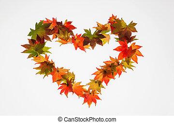 otoño, corazón, hojas, forma, colorido