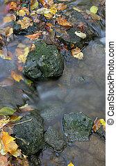 otoño, corriente, roca