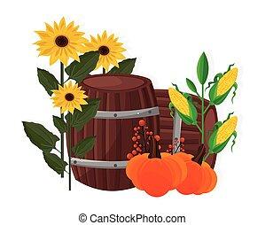 otoño, cosecha, girasol, maíz, calabaza, y, barril, vector
