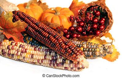 otoño, cosecha