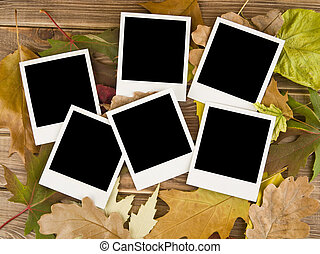 otoño, cuadros, hojas