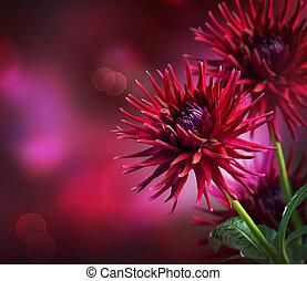otoño, dalia, flor, diseño